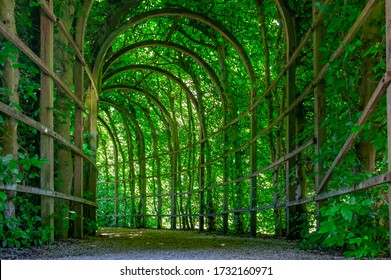 Beautiful pergola tunnel in a citypark in Groningen the Netherlands on a bright summerday