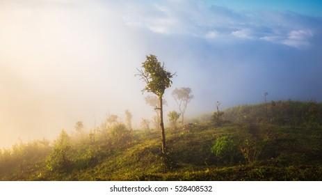 Beautiful PhuChiDurn landscape view point as background