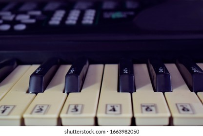 Beautiful piano Is a melodious musical instrument