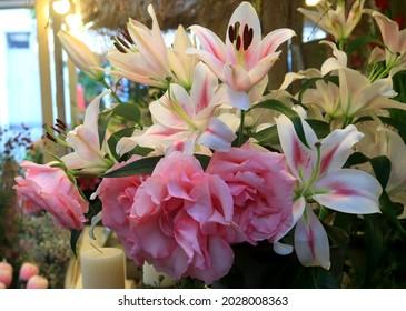 Hermosas y pintorescas flores en Dusseldorf, Alemania