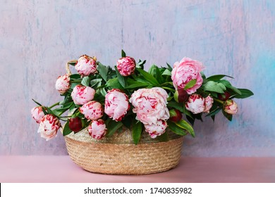 Beautiful pink bouquet of peonies in a basket. Birthday background with copy space.