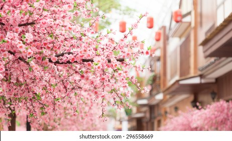beautiful pink cherry blossom (Sakura) flower, and with vintage japan building background.