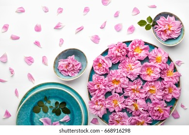 Beautiful pink damask roses in turquoise plate on white background. Top view, flat lay.
