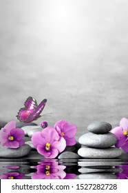 Beautiful pink flower, butterfly and stone zen spa on grey background.