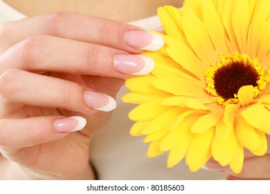 A beautiful pink flower with woman's hands