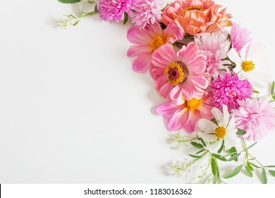 beautiful pink flowers on white background
