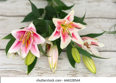Beautiful pink lily flowers on wooden background, with space for text.  Perfect image for: lilies flowers, white and pink lily flower, florist, garden, autumn flowers bouquet etc.