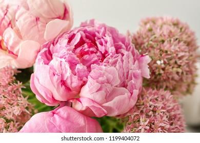 Beautiful pink peony flowers on light background, closeup