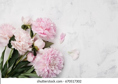 Peony images stock photos vectors shutterstock beautiful pink peony flowers on white stone background with copy space for your text top view mightylinksfo Gallery