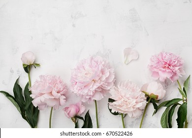Peony images stock photos vectors shutterstock beautiful pink peony flowers on white stone table with copy space for your text top view mightylinksfo