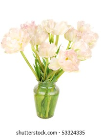 Beautiful pink piny tulips  in vase isolated on white background.