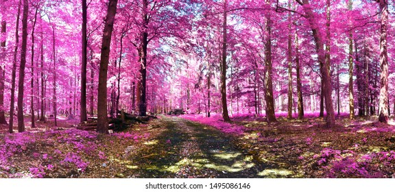 Beautiful pink and purple infrared panorama of a european countryside landscape with a blue sky