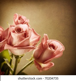 Beautiful Pink Roses.Vintage Styled.Sepia toned