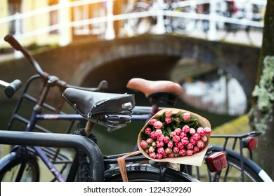 beautiful pink tulips on a old bike at the Amsterdam