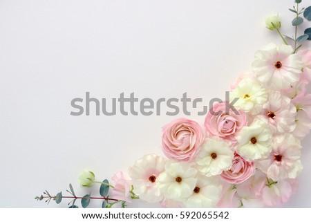 Beautiful pink white ranunculus flowers sweetpea stock photo edit beautiful pink and white ranunculus flowers sweetpea flowers and eucalyptus leaves on white background mightylinksfo