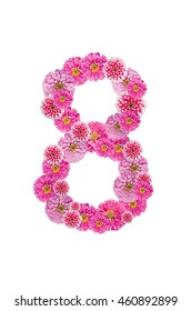 Beautiful pink zinnia flower put together in number eight shape, isolated on white background