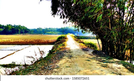 It's a beautiful place of Bangladesh . Bangladesh is the beautiful place of all other countries in the world. This is a scene of village road.