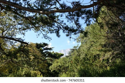 Beautiful places in the park Vorontsov Palace in the vicinity of Yalta, Crimea
