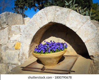 Beautiful plant vase with purple flowers in Mount Tabor, Israel. Amazing ancient arc and view