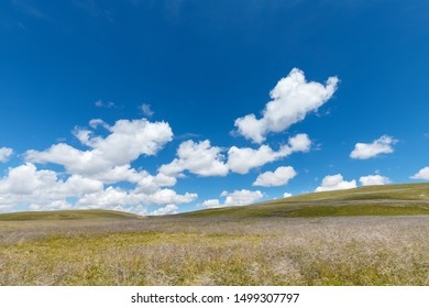 beautiful plateau scenery, blue sky and grassland, three river source region, qinghai province, China