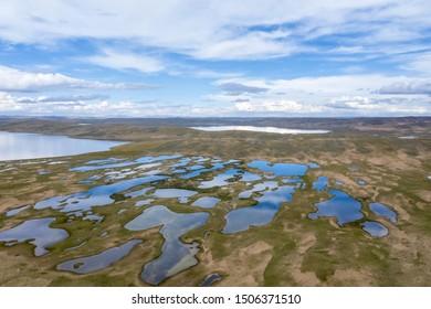 beautiful plateau wetlands against a blue sky, madoi county, qinghai province ,China