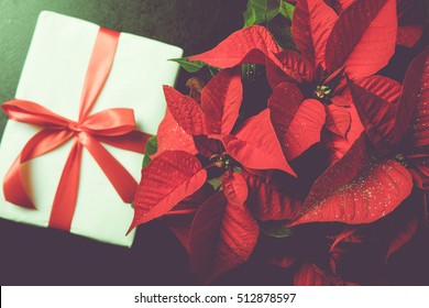 Beautiful poinsettia with gift box in vintage style