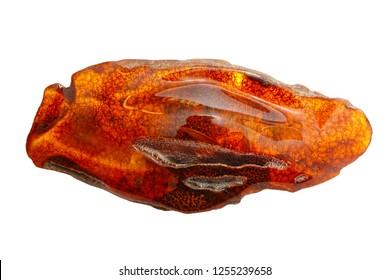 Beautiful polished piece of amber on a white background. Unusual forms of amber. Fossil ancient petrified resin. Amber piece of oblong shape. Products of nature. Sun Stone Amber Science