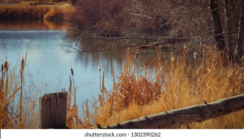 A beautiful pond in the Fall with a gentle breeze causing a slight rippling of the crystal blue water and motion blur of the tall golden dried grasses that sit against a vintage country fence.