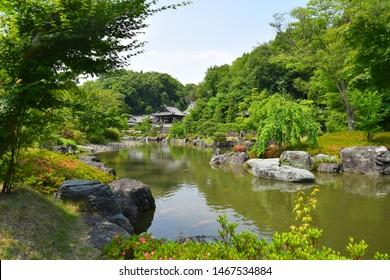 beautiful pond in japanese garden.
