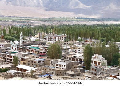 Beautiful poplar tree and houses in the green Indus valley