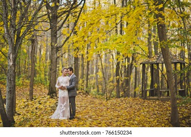 Beautiful portrait of the newlyweds on the background of the autumn forest.