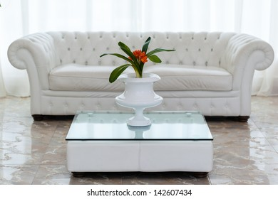 a beautiful potted plant with orange flowers on a minimal table and a white and cozy sofa