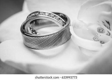 Beautiful and precious wedding rings.  Promise, trust, ceremony, celebration, love, religion concepts