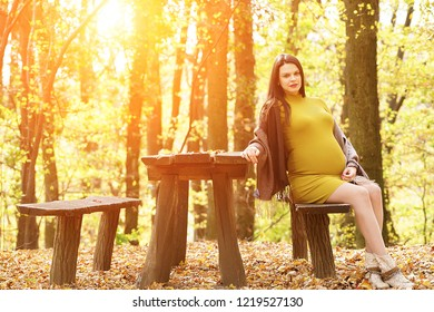Beautiful pregnant woman sitting on the bench in the autumn, fall park. Sunlight, lens flare, copy space