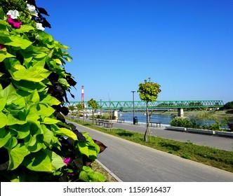 Beautiful promenade by the river Drava on a sunny summer day in Croatian town Osijek in Slavonia region