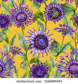 Beautiful purple African daisy flowers with green leaves on yellow background. Seamless bright floral pattern. Watercolor painting. Hand painted illustration. Design of fabric, wallpaper