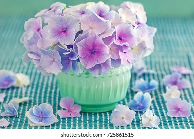 Beautiful purple hydrangea flowers close-up in a vase on the table.