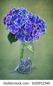 Beautiful purple hydrangea flowers in a vase. Vintage style and grunge green paper background.