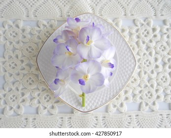 Beautiful purple orchid with empty coffee cup on table covered  by crochet lace