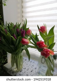 beautiful purple and red unopened tulip buds in a vase on the windowsill. Floral wallpaper.