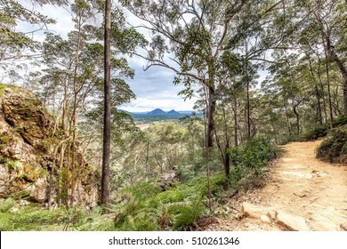 A Beautiful Queensland Bush walk with a view