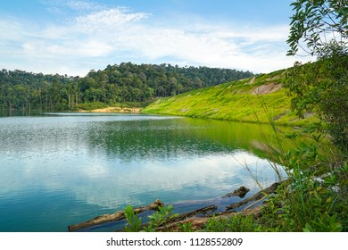 Beautiful and quiet lake surrounded by green