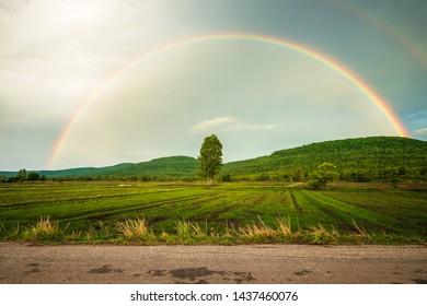 Beautiful rainbow above the mountain and rice farm, rainy season in countryside of Thailand