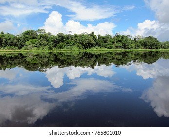 Beautiful rainforest and sky reflecting in a lake in Ecuador