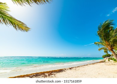 Beautiful Raisins Clairs beach in Guadeloupe, French west indies. Lesser Antilles, Caribbean sea