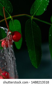 Beautiful, red, bright, ripe mountain ash with leaves, with a stream of water, with splashes, with droplets in a glass of wine. Rowan in a glass of water.
