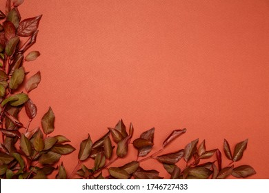 Beautiful red and dark brown foliage on orange background, view from above, flat lay, frame form, textures and backgrounds, template for greeting card and invitations