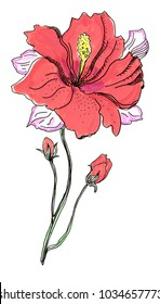 Beautiful red flower, closeup on a white background, with elements of the sketch and spray paint, as illustration for the cover of a notebook or Notepad, or print for garment