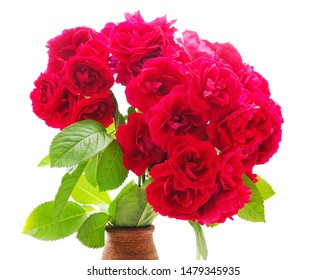 Beautiful red flowers in the vase isolated on a white background.