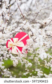 Beautiful red gift box in shape of heart surrounded by flowering branches of spring trees.
